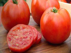 domates alerjisi sebepleri, domates neden alerji yapar, domates alerjisinin sebepleri
