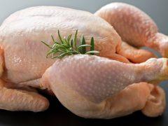 kas yapımı, tavuk ile kas yapmak, kas yaparken tavuk tüketmek